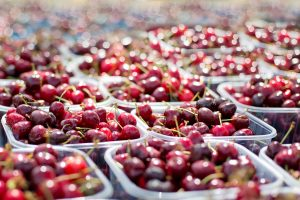 Fresh cherries at the farmers market